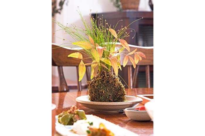 テーブルコーディネート 和 苔玉