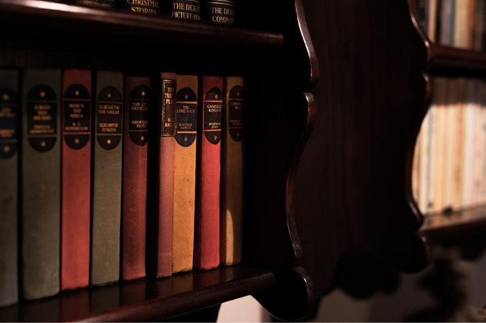 本棚 インテリア 壁掛け 図書館